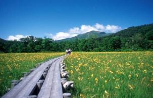 谷川岳の四季折々の景観を満喫できる心安らぐ温泉宿